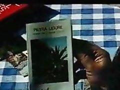 Palmen  Mee und nasse Grotten (1979)