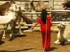 Angelica Marai - Pyramid 3