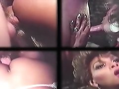 Clips of Vintage She-male Action